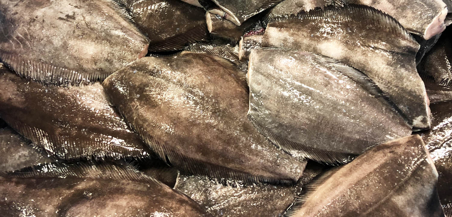 Greenland Halibut from Sirena Group