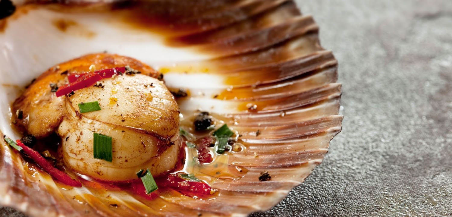Shell-on Canadian scallops