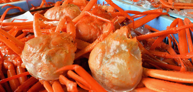 Whitecap Seafood Snow Crab, partner of Sirena Group