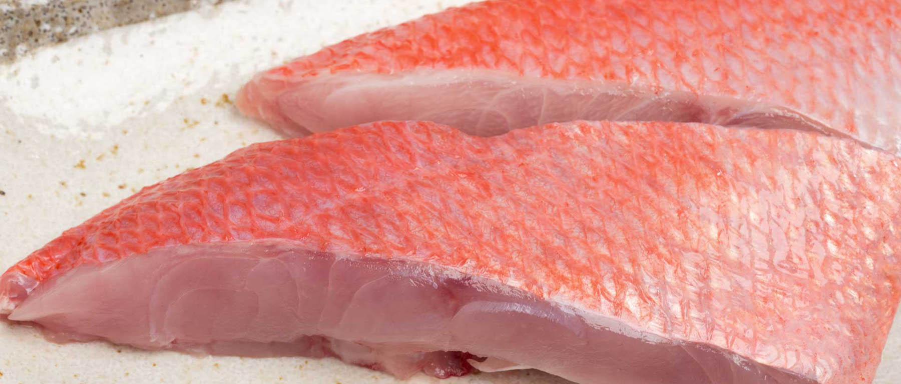 Red Fish from Sirena Group